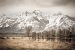 Tetons in Sepia